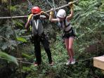 Go on an adventure in the Rainforest Canopy