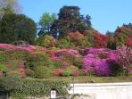 fioritura di Villa Carlotta, foto turistica