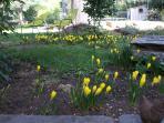 Les extérieurs : le jardin