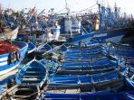 Essaouira's fishing port