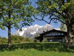 Country House Blaubeer in Summer Dachstein Glacier