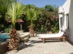 Sun loungers in rear garden