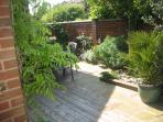 Decked garden area, full of wonderful wildlife