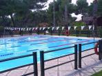 municipal olympic pool