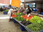 Fresh produce at the market......