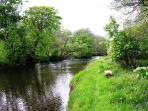 River Eachaig by Rashfield