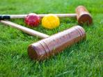 Game of Croquet?