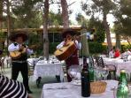 local restaurant with fabulous food and live entertainment