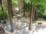 Vine gazebo and turtle pond