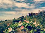 San Donato spring