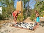 Giant chess set at the bottom of the garden