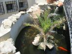 Koy Fish pond adjacent to stairs leading to apartment
