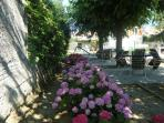 coin salon de jardin avec hortensias