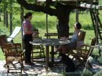 The table under the plum tree (susino).