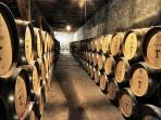 Visiting the Vinyards & Wineries in Chile...a must !