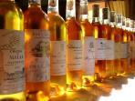 vins de Sauternes à découvrir ...du vin de petit propriétaire à l'illustre Château Yquem !