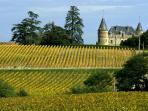 Promenades dans le vignoble... émaillé de somptueux châteaux