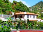 Villa with the exotic garden