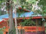Naranja House