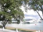 Lots of visiting boats to watch from the property