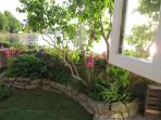 View from the kitchen window through gardens to the water