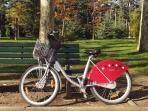 Vélo'v: the public bicycle