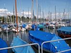 Busy yacht harbour in town