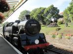 Swanage Steam Railway 300m away