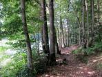 A beautiful riverside walk in Vezins