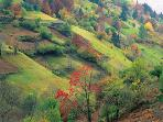 Rhodopes in autumn