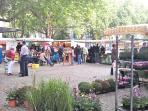 A nearby market