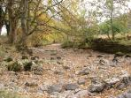 Autumn at the river bed after a dry summer!