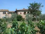 Charming 2 bedroom apartment in restored Tuscan farmhouse with pool located in historic Cortona