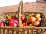 We grow a lot of vegetables and fruit- sometimes you can buy from us, or pick yourself in the garden