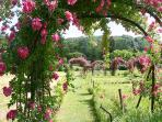 Paths of Roses in La Chartreuse du Maine vegetable garden in June