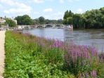 Thames river -Twickenham pathway to Richmond
