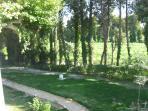partie de jardin