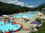 The Pool in Summer