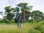 Forêt de baobabs dans le domaine de 8 ha