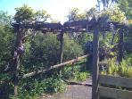 Cascade's garden path (below cottage)
