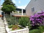 Villa Timy garden