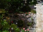 Private paths and gates for each apartment to heart of Herceg Novi old town (one minute)