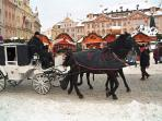 Horse and carriage in Old Town Square