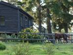 Angels Rest Farm, peaceful self-catering cabin