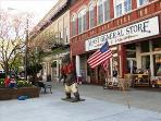 Shop and Dine in Downtown Hendersonville - Minutes from the Upper Millhouse