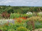 You're welcome to walk round the huge gardens with far-reaching vistas and drifts of plants.