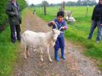 Addi from India having a chat with Billy Goat Gruff