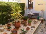 tropical plants in front garden