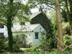 Beckside Cottage, snuggled inbetween the trees