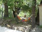 Sieste sous les chênes